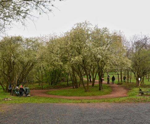 Jarní úklid Sklenářova dolíku
